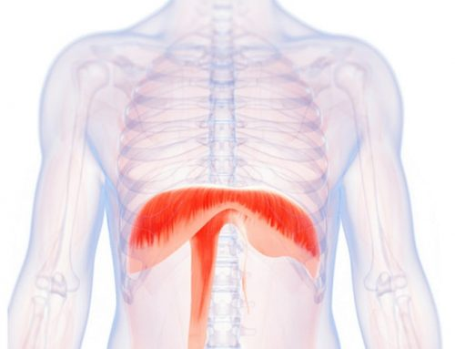 Pilates Practice and Your Respiratory Health!